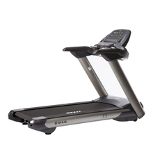 Top Sales Fitness Trademill SH-5517A (S)